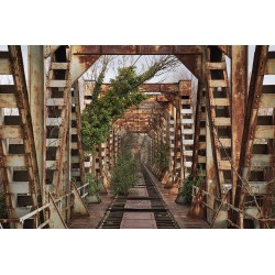 "Postcard ""Ponte Ferroviario"""