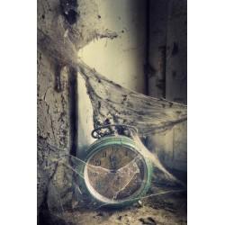 "Postcard ""Time Capsule"""